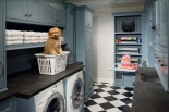 cute-dog-in-laundry-room